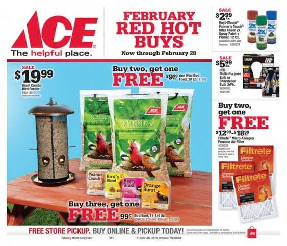 ace hardware monthly ads valid until 2/28/2017
